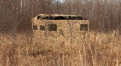 Cowboy Camo Trailer out in the in the cattails with a waterfowl opening.
